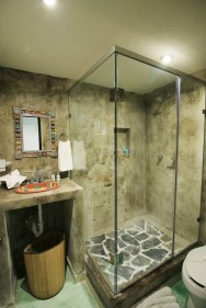 Bathroom with glass walk-in shower